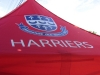 harriers-jpg